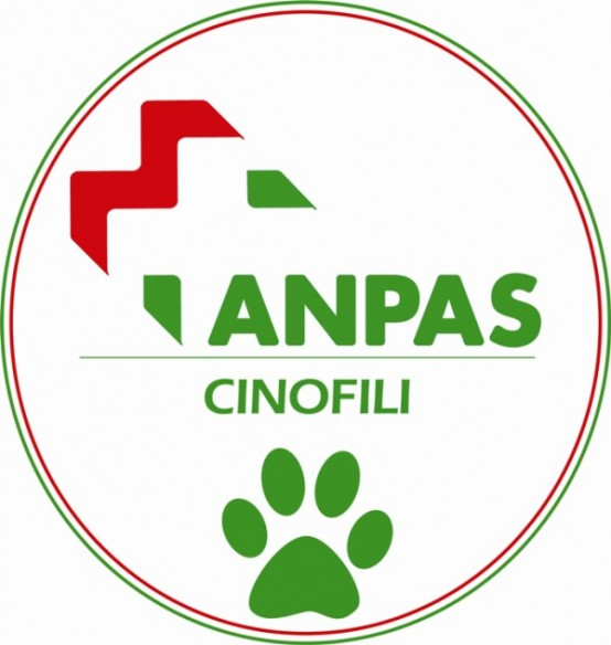 logo embroidered ANPAS small