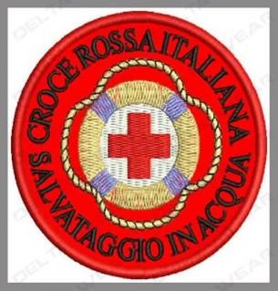 logo lifeguard / wasserwacht
